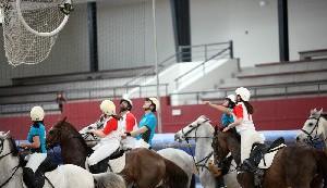 horseball03